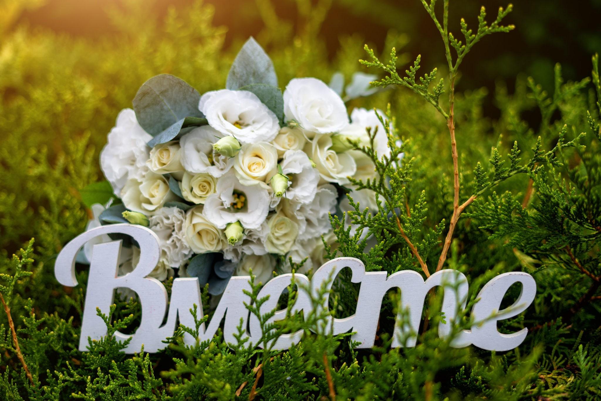 Свадебная фотосъемка в Крымске от Краснодарского свадебного фотографа: съемка в Крымском питомнике Гавриш